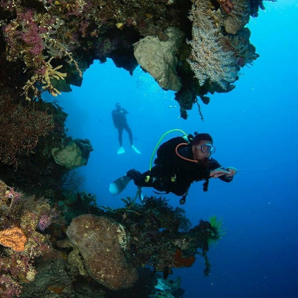 Can You Dive in Komodo Alone?